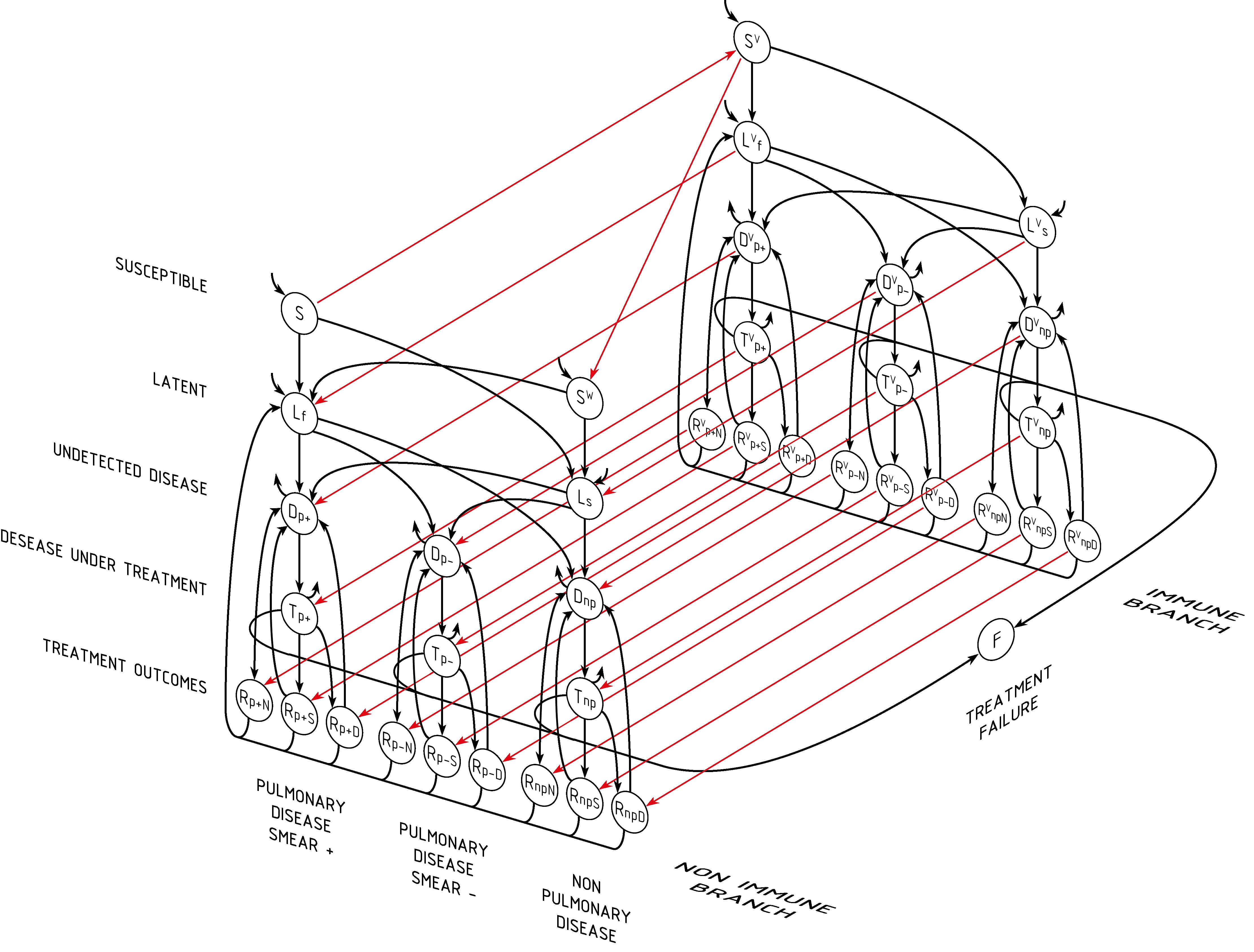 tb_disease_modeling
